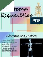 sistema-esqueltico-1204506992259159-4