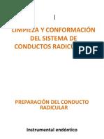 LIMPIZA  y conformación de CR.pptx