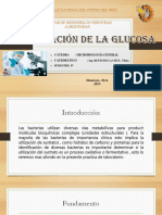 Microbiologia General Fermentacion de La Glucosa (1) [Autoguardado]