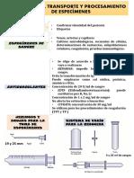 1era Obtención, Transporte y Procesamiento de Especímenes (1)