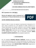 Perdida de Investidura, Expediente Núm. 2009-00011