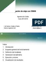 swan_IC.pdf