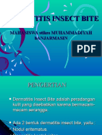 Dermatitis Insect Bite