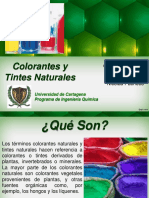 Colorantes y Tintes Naturales (Copia en Conflicto de Fidelina Canabal Colon 2013-10-01)