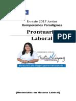 Laboral Prontuario