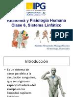 Clase 6. Sistema Linfatico