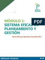 Sistema eficaz de planeamiento y gestión.pdf