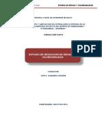 310393138-Estudio-de-Vulnerabilidad-y-riesgos-Secsecca.docx