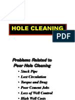 Problems Holecleaning