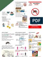 Dengue-Triptico