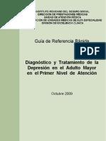 GRR Depresión en El Adulto Mayor