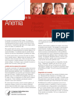 anemia-inbrief_yg_sp.pdf