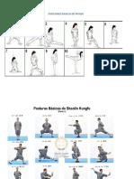 Posiciones Basicas de Wushu