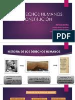 Los derechos humanos en la constitucin 150530032825 Lva1 App6892