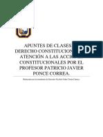 Acciones Constitucionales Profesor Patricio Ponce