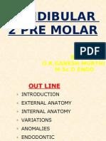 mandibular 2 premolar