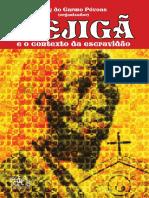 MEJIGÃ - Ruy Póvoas..pdf