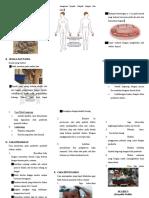 dokumen.tips_leaflet-scabiesdoc.doc