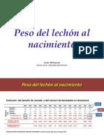 Peso Del Lechón Al Nacimiento1387376725870