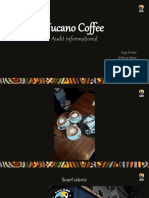 Tucano-Coffee_audit-informațional.pptx