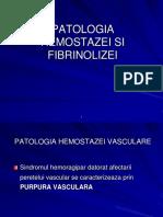 2.PATOLOGIA HEMOSTAZEI VASCULARE.ppt