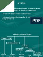 2016 CP angine.ppt