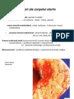 Patologia Aparatului Genital Feminin2017 - Partea a Doua (1)