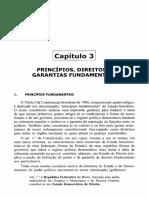 Capítulo 3 - Princípios, Direitos e Garantias Fundamentais.pdf