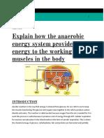 Aerobicexercisesportsscience.docx