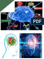 Imprimirr Imagen de Neuro