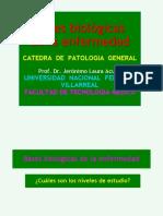 UNFV Bases Biologicas de Las Enfermedades