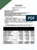 Raport Semestrul I 2013