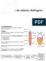 CAVIDAD CORPORAL , MESENTERICOS Y DIAFRAGMA PPT