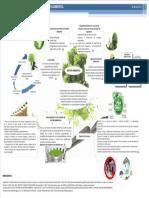 Organizador Gráfico de Gestión Ambiental (Baño-puma)
