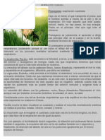 RESPIRACION CUADRADA.pdf