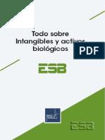 Intangibles y Activos Biologicos.