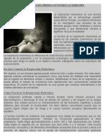 RESPIRACION HOLONERICA.pdf