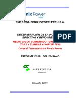Informe Fenix.pdf