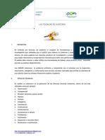 Las Tecnicas de Auditoria1