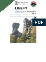 EBM-Report 3-17
