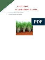 Documento Madre Biodiesel Cap v y Vi