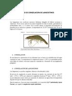 PROCESO-DE-CONGELACION-DE-LANGOSTINOS-word.docx