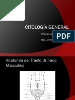 Citología orina