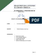 ensayo-economia.docx
