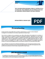 Presentacion Tesis Miriam Rebeca