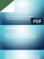 HA2NV50-Eq3-METODOLOGIA ESPIRAL.pptx