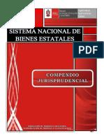 JURISPRUDENCIA EN SANEAMIENTO FÍSICO ESTATAL , SBN