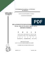 Tesis Tlaloc.pdf