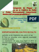 Enfermedades Del Palto 2016 Ppt