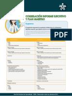 14 Correlacion Informe Ejecutivo y Plan Maestro